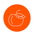 apple with leaf round linear icon simple vector image vector image