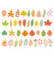 autumn leaves yellow autumnal garden leaf red vector image vector image