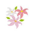 decorative blowing lily flower vector image