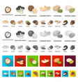 different kinds of nuts cartoon icons in set vector image vector image