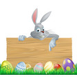 easter eggs and bunny sign vector image vector image