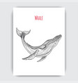 hand drawn sketch whale tattoo vector image