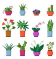 house plants in pots vector image vector image