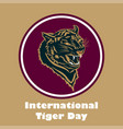international tiger day poster template with angry vector image vector image