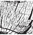 Texture Skin vector image vector image