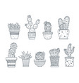 a set cacti doodle style black color isolated vector image vector image