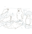 Arctic animals coloring book educational game vector image