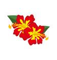 decorative red hibiscus flower vector image