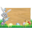 easter bunny and eggs basket sign vector image vector image