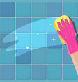 hand in gloves with sponge vector image
