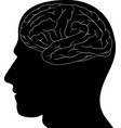 head and brain vector image