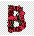 Letter B made from red berries sketch for your vector image vector image