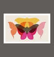 retro poster with butterflies and moths vector image vector image