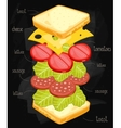Sandwich Ingredients on Chalkboard vector image vector image