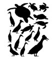 turtles and duck silhouette vector image
