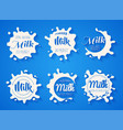 white milk splash blot set drink element vector image