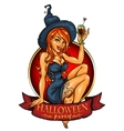 witch with pumpkin cocktail label vector image