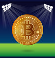 bitcoin on field vector image vector image