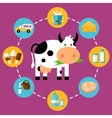 infographics milk products vector image