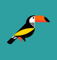 modern flat style colorful toucan vector image vector image