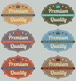 Set of Vintage Retro Labels vector image vector image