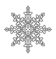 Various isolated winter snowflake vector image vector image