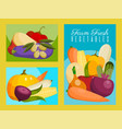 vegetable set banners farm vector image