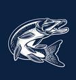 vintage pike fish logo fishing vector image