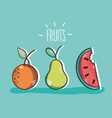 set delicious and fresh tropical fruits vector image