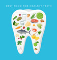 best food for helthy teeth concept vector image