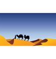 camels and bedouin in desert vector image