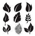 collection leaves black flat icons vector image