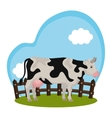 cow animal farm in the field vector image