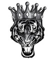 hand drawn portrait tiger with crown vector image vector image