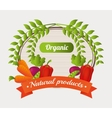 healthy product design vector image vector image