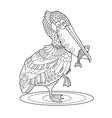 pelican bird with fish coloring book vector image vector image