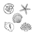Set of seashells vector image vector image