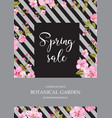 spring flower card vector image