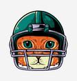 cat with helmet american footbal player vector image vector image