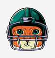 cat with helmet american football player vector image