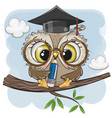 clever owl with pencil and in graduation cap vector image