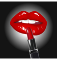 Lips and Lipstick vector image vector image