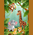 the animals are in the jungle vector image vector image