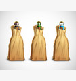 beer bottles in paper bags vector image