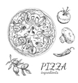 Ink hand drawn pizza ingredient set vector image