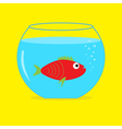 Red fish in the aquarium Card vector image