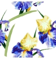 Seamless pattern with watercolor irises-02 vector image vector image