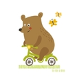 Bear to ride a bike vector image vector image