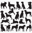 boxer-dog silhouettes vector image vector image
