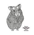 hand drawn hamster black ink sketch animal vector image